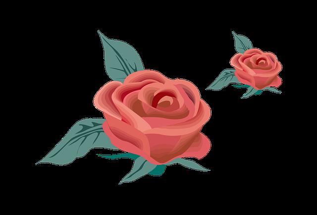 Hur man ritar en ros